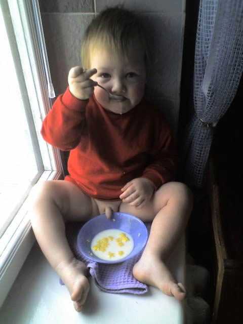 how-was-your-cereal-this-morning