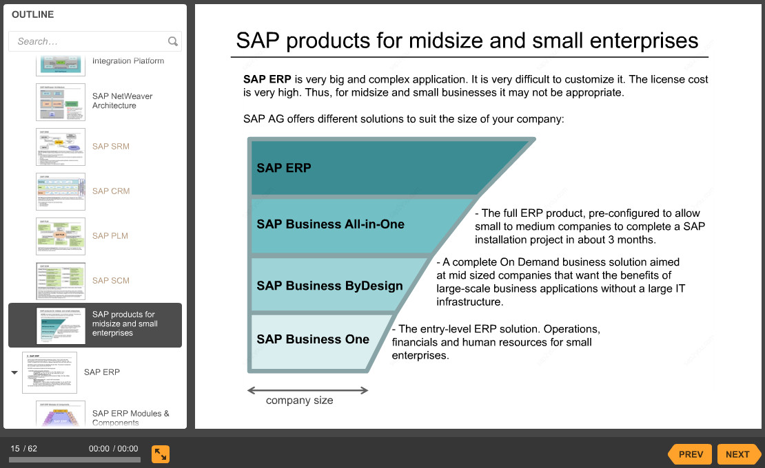 12-sap-products-for-small-enterprises